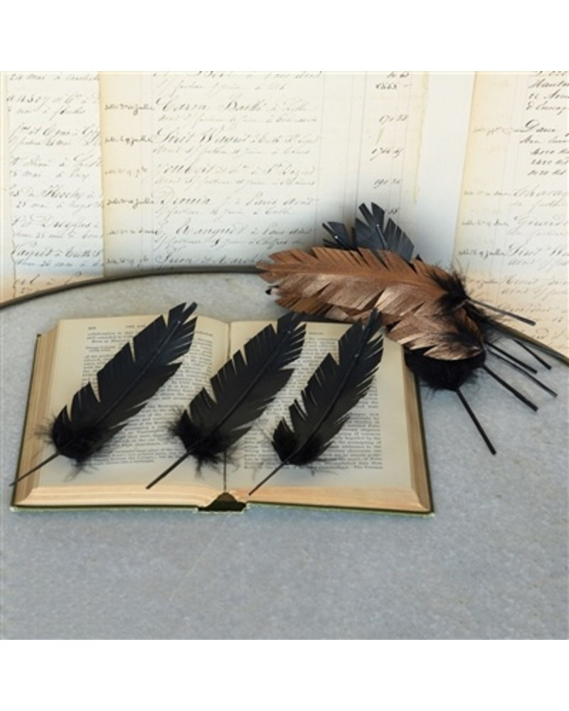 HomArt Paper Feathers in Copper - Box of 12