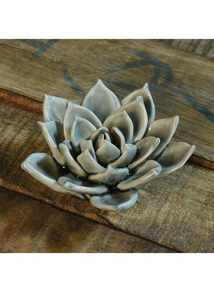 HomArt Ceramic Succulent - Grey