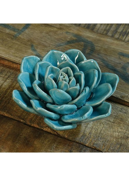 HomArt Ceramic Succulent - Teal Green