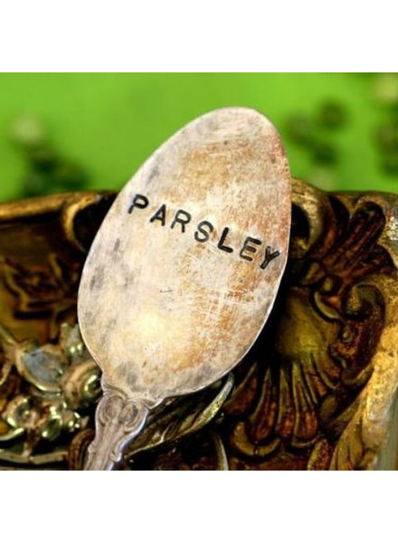 "Monkeys Always Look ""Parsely"" Stamped Spoon"