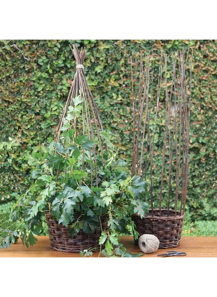 HomArt Willow Gathered Baskets - Set of 2 - natural