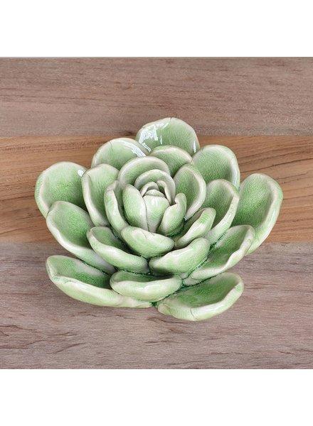 HomArt Ceramic Succulent Green - Lrg