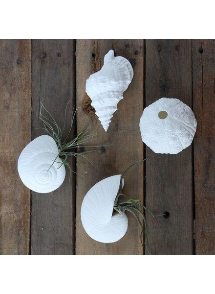 HomArt Snail Bone China Wall Vase - White
