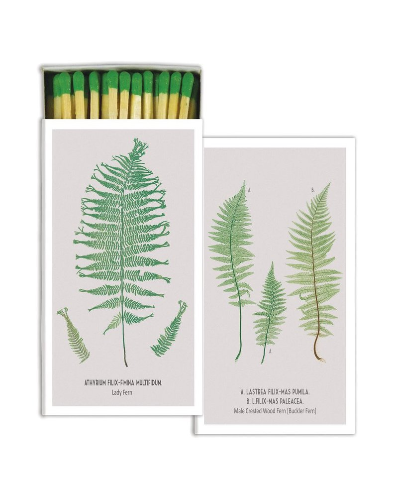 HomArt Matches - Matches - Ferns - White Background - Set of 3