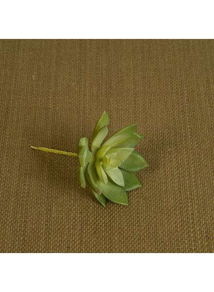 HomArt Medium Green Faux Echeveria Succulent - Set of 4