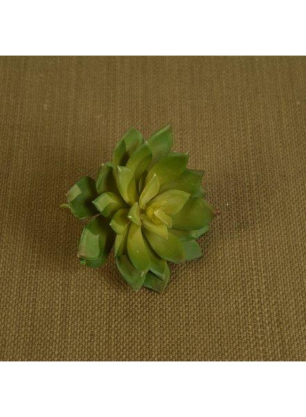 HomArt Large Green Faux Echeveria Succulent - Set of 2