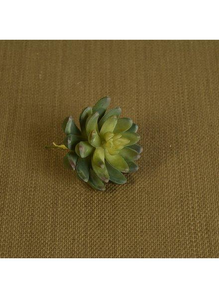 HomArt Faux Succulent - Lrg - Green