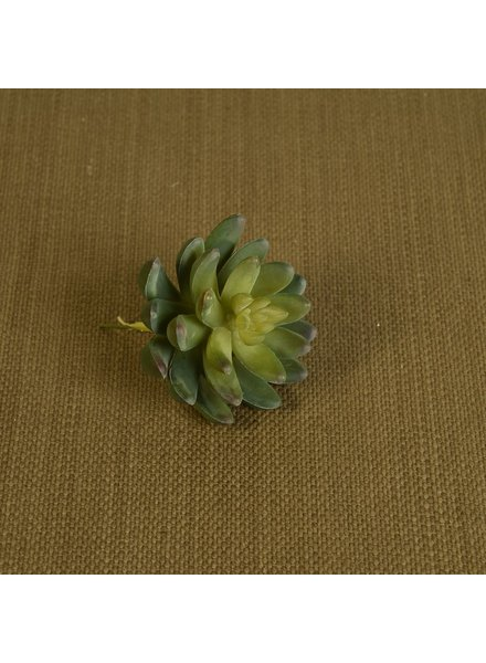 HomArt Large Green Faux Succulent - Set of 2