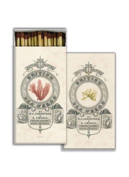 HomArt Matches - British Sea Weeds - Brown  - Set of 3