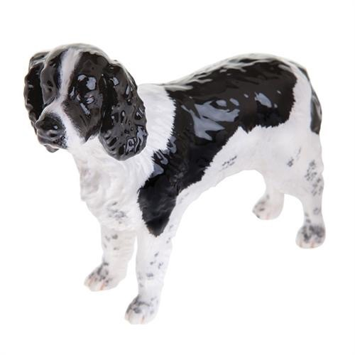 Australia JB ENGLISH SPRINGER<br />  SPAN BLK/WHT N
