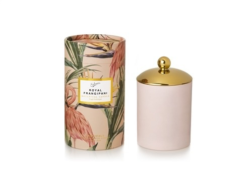 Australia ECO CANDLE ROYAL FRANGIPANI