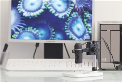 Australia CAM DIG MICROSCOPE USB 300X W/STAND 5MP