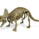 Australia Dr Steve - Dino Excavation Kit