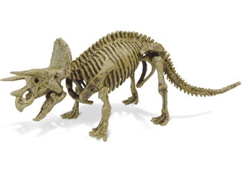 Australia Dr Steve - Dino Battle Excavation Kit
