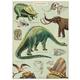 Australia Giftwrap - Dinosaurs