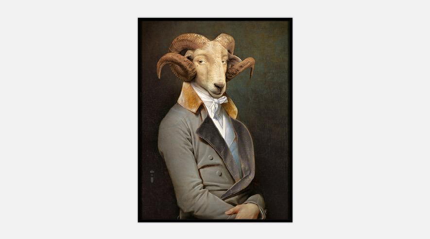 Australia Bel Ami Portrait M