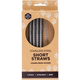 Australia EVER ECO Stainless Steel Short Straws Straight - 4 pack+brush