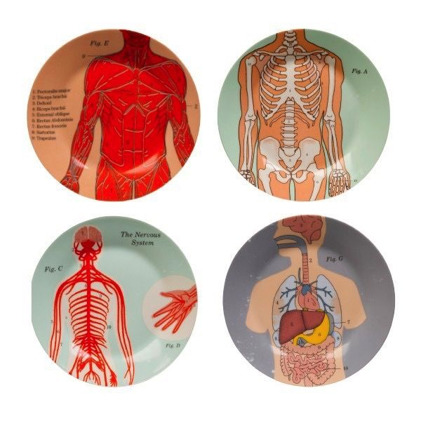 Europe Anatomical Side Plates Set of 4