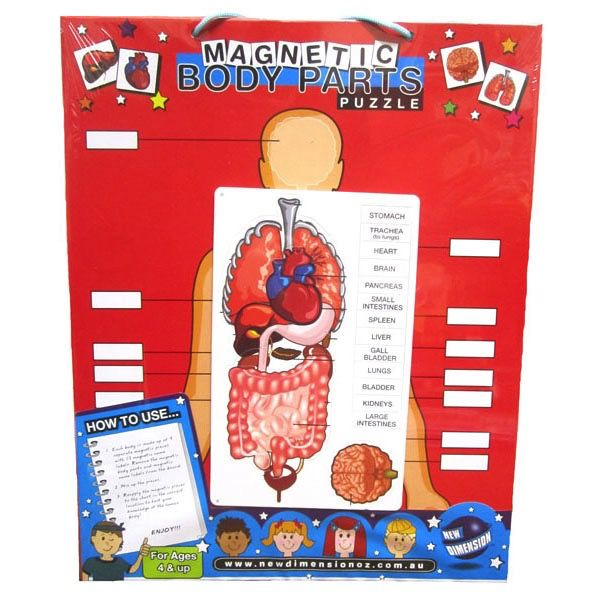 Australia MAGNETIC BODY CHART
