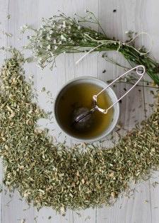 Australia Test Tube Tea - LEMON GINGER