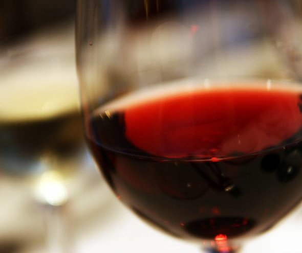 Our Guide to Red Wines