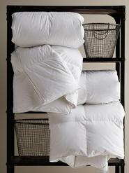 Kingsley Down Comforters