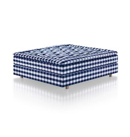 Hastens Hastens Herlewing (formerly Proferia)
