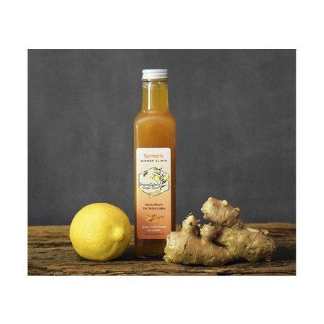 ImmuneSchein Ginger Turmeric Elixir