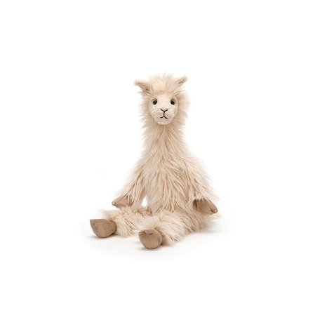 Luis Llama