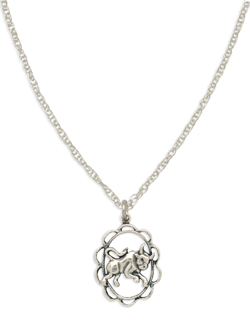 Hiouchi Jewels ZODIAC CHARM NECKLACE ~ TAURUS