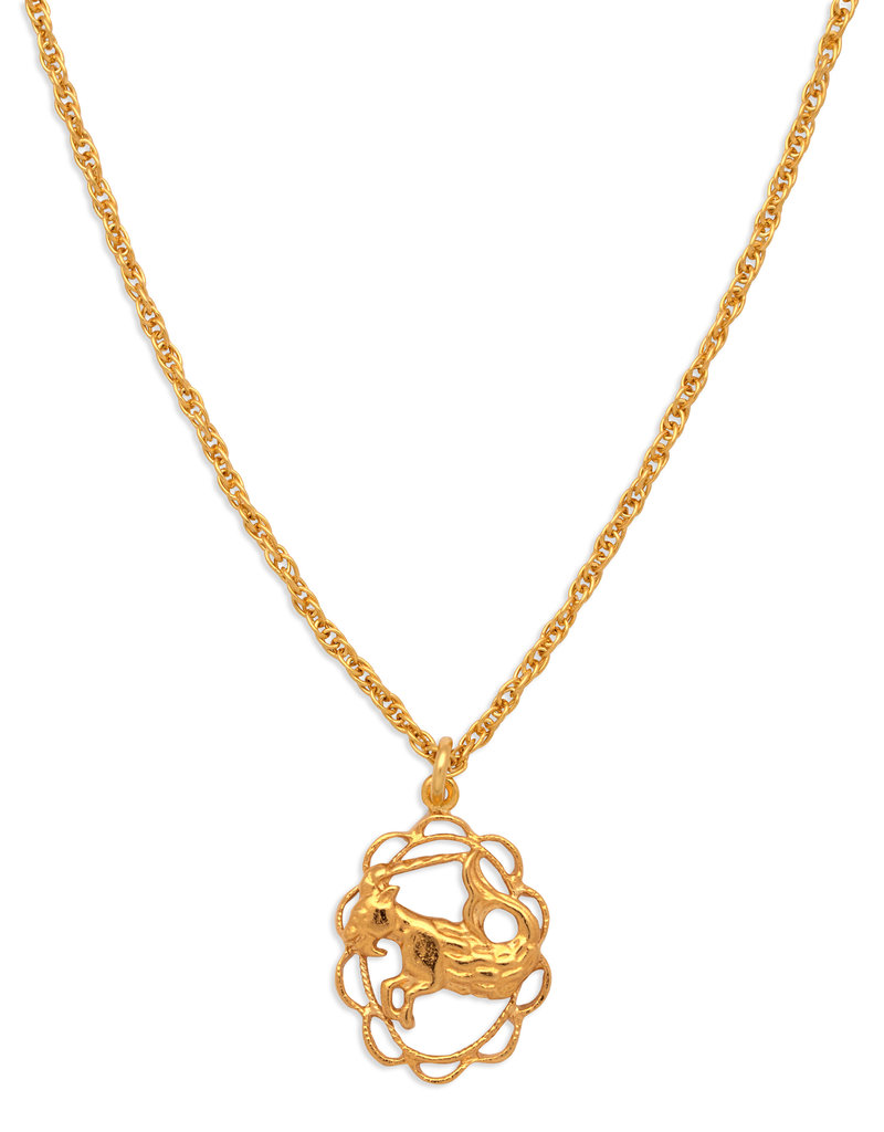 Hiouchi Jewels ZODIAC CHARM NECKLACE ~ CAPRICORN