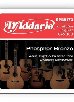 D'Addario D'Addario Phosphor Bronze Acoustic Bass, Long Scale, 45-100
