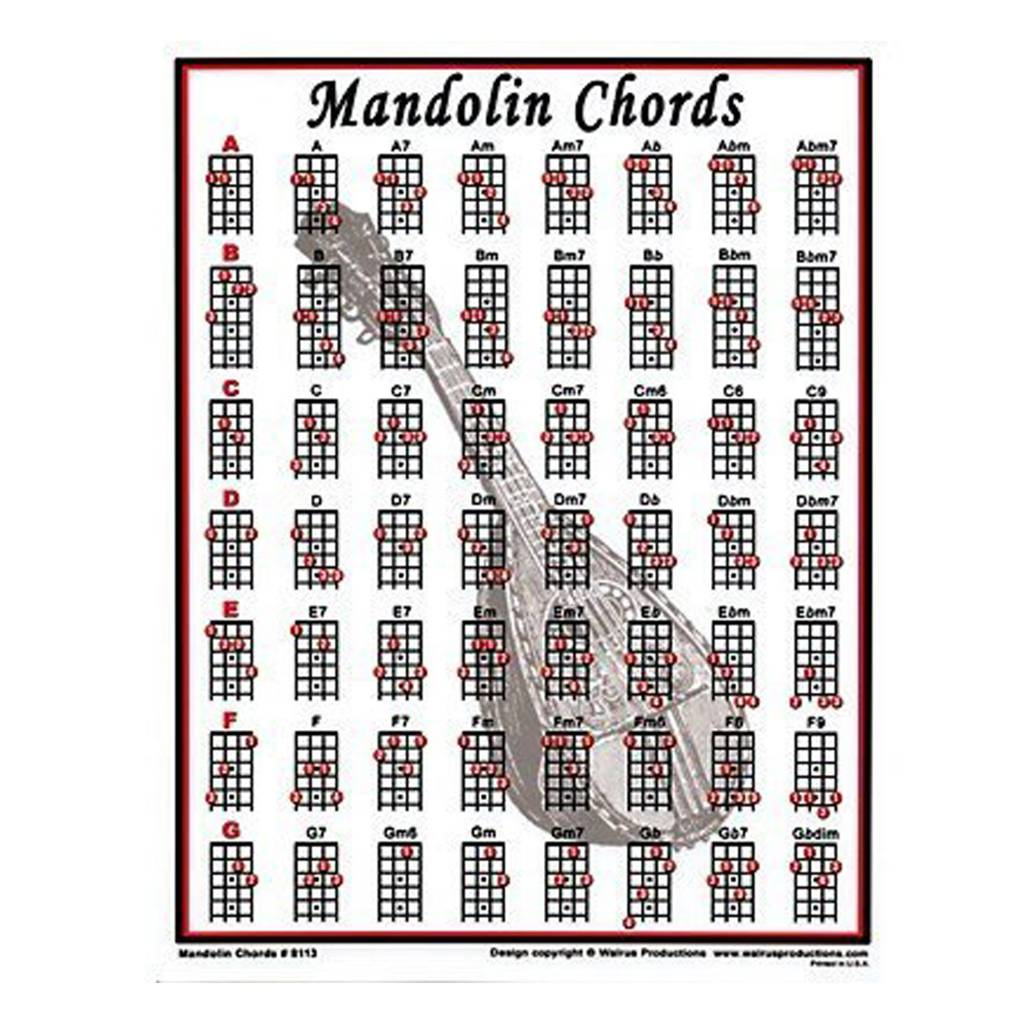 Walrus Mandolin Mini Chord Chart