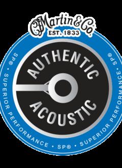 Martin Martin Authentic 92/80 Phosphor Bronze Acoustic Light Set, 12-54