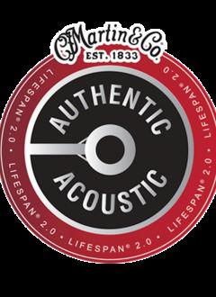 Martin Martin  Authentic Lifespan 2.0 92/80 Phosphor Bronze Acoustic Light Set, 12-54