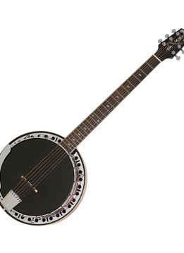Epiphone Epiphone STAGEBIRD 6-String Banjo