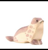 Ostheimer Sea Lion head low