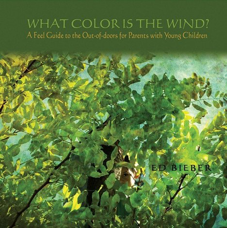 Independently Published What Color Is The Wind? - A FEEL Guide to the Out-of-doors for Parents with Young Children