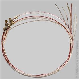 Auris Auris lyre string set pentatonic for LNP + LGP