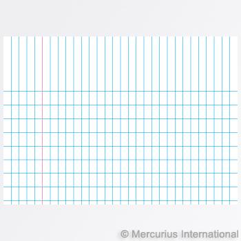 Mercurius Exercise book graph 16x21cm, 4x7mm graph - blue