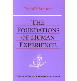 Steiner Books The Foundations Of Human Experience: (CW 293)