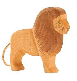 Ostheimer Lion male