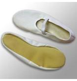 Mercurius Eurythmy Shoes
