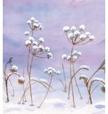 Floris Books Little Fairy's Christmas