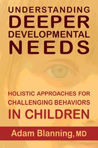 Lindisfarne Press Understanding Deeper Developmental Needs