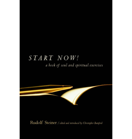Steiner Books Start Now!: A Book Of Soul And Spiritual Exercises