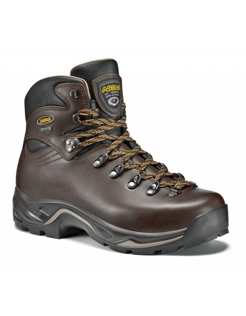 Asolo Men's TPS 520 GV EVO Waterproof Boot