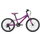 Liv Girl's Enchant 20 Lite Purple (2020) Mountain Bike
