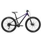 Liv Women's Tempt 2 (2020) Mountain Bike