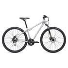Liv Women's Rove 3 DD Disc (2020) Hybrid Bike